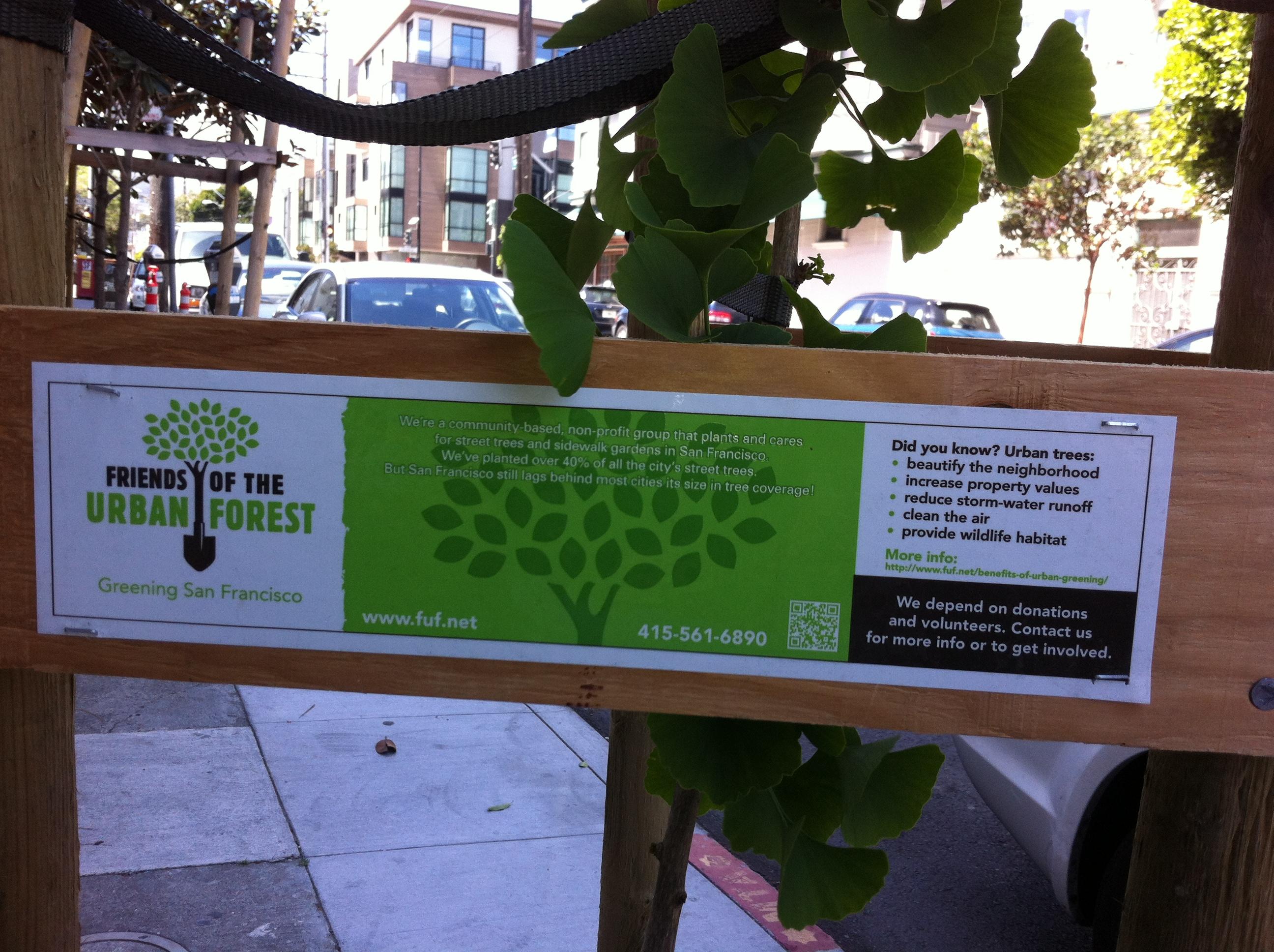 Greening San Francisco